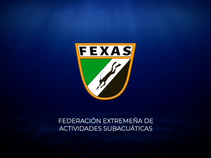 Fedas_web_1